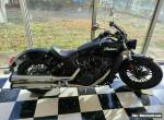 2019 Indian Scout for Sale