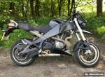 Buell xb12x for Sale
