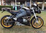 Buell XB12r 2004 for Sale