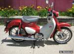 2020 Honda SUPER CUB for Sale